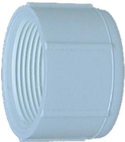Genova Products 30165 PVC Pressure Pipe Cap, White PVC, 1/2-