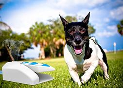 ALL FOR PAWS Dog Step on Water Sprinkler Pet Garden Water Fo