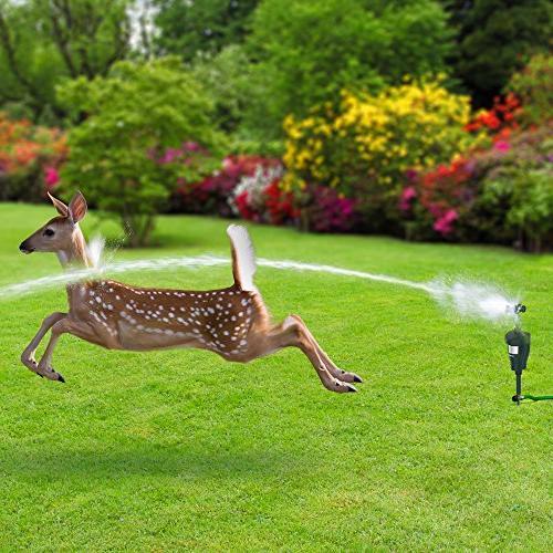 Hoont Cobra Garden Repellent Motion Control Water Jet