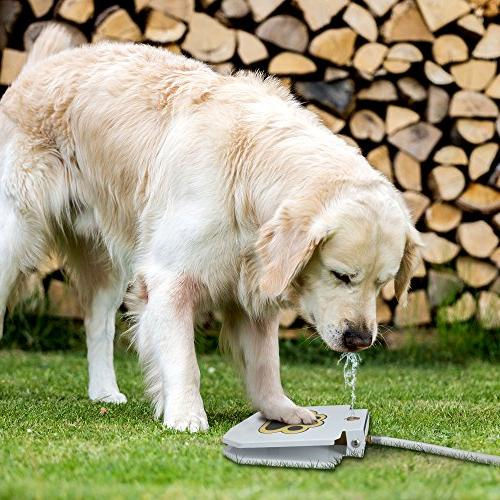Trio Gato's Outdoor Dog Pet Activated Dog Water Fountain Toy