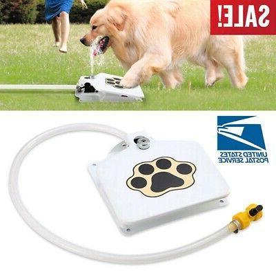 dog pet water sprinkler easy
