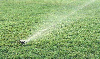 Rain Bird Rotary Sprinkler 5 Nozzles