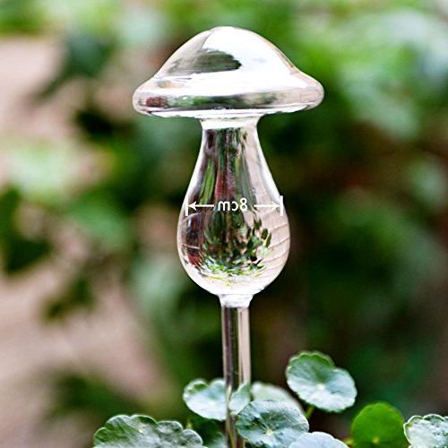 plant water bulbs hand blown
