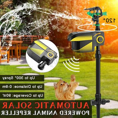 solar power motion activated water animal dog