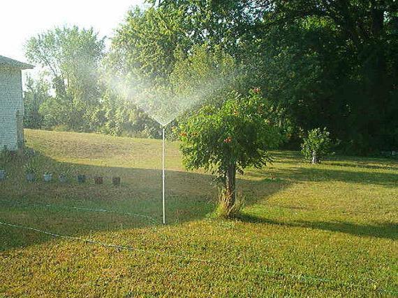 """SPRINKLER 2' 5' tall Garden Sprinkler RAIN"""""""